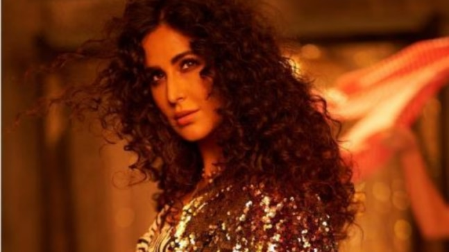 Katrina Kaif  I had to put in a lot of hard work to get where I am today - India Today