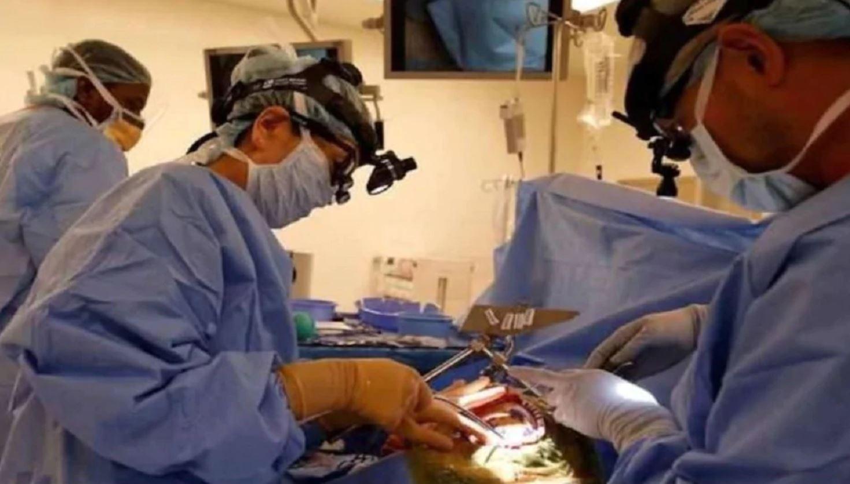 महिला के पेट में तौलिया भूल गया डॉक्टर