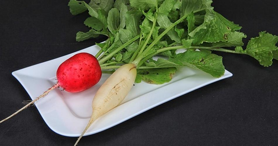 जड़ वाली सब्जियां