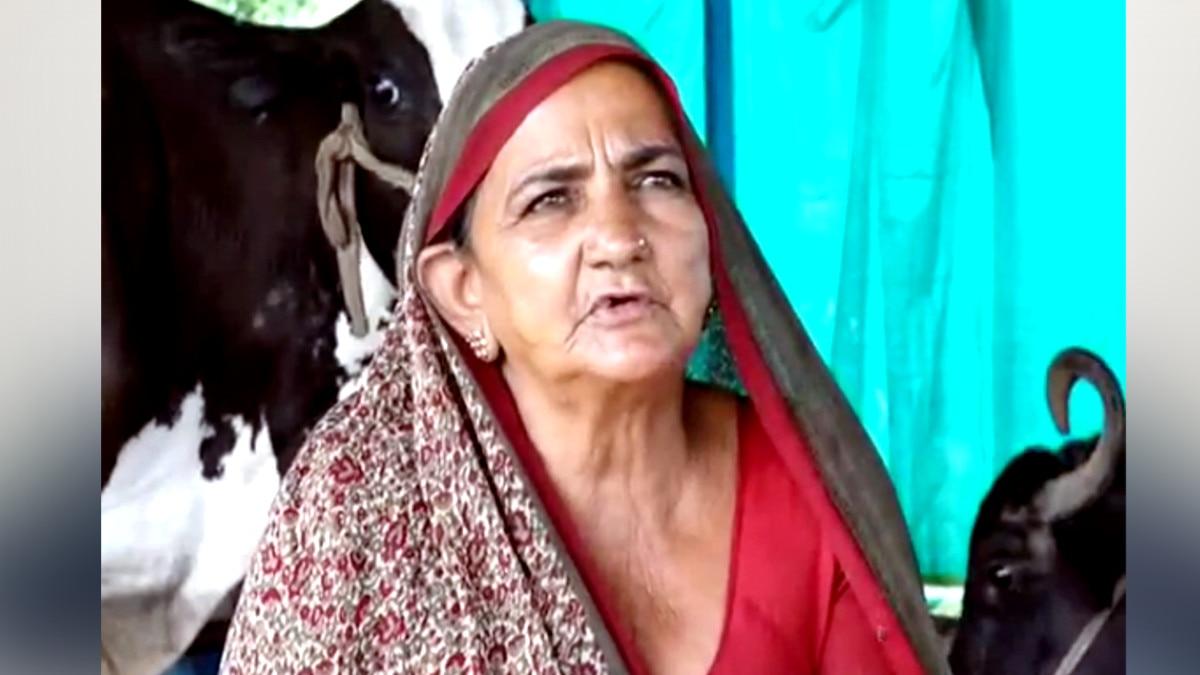 दूध बेचकर करोड़पति बनी 62 साल की महिला, हर महीने कमाती हैं साढ़े 3 लाख रुपये