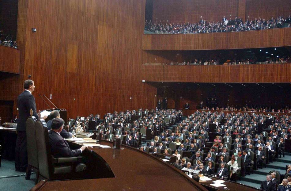 rocio pino model turned politician
