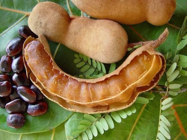 रूप निखारने के लिए कीजिए खट्टी इमली का इस्तेमाल - beauty benefits of  tamarind - AajTak