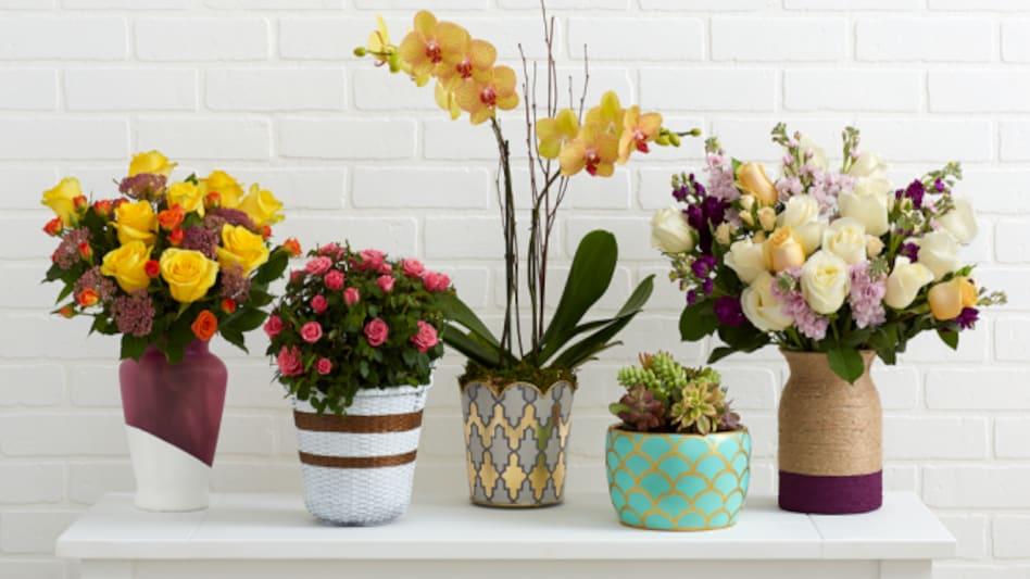 इन 5 टिप्स की मदद से रखें फूलों को ताजा - 5 tips to keep flowers fresh in vase - AajTak