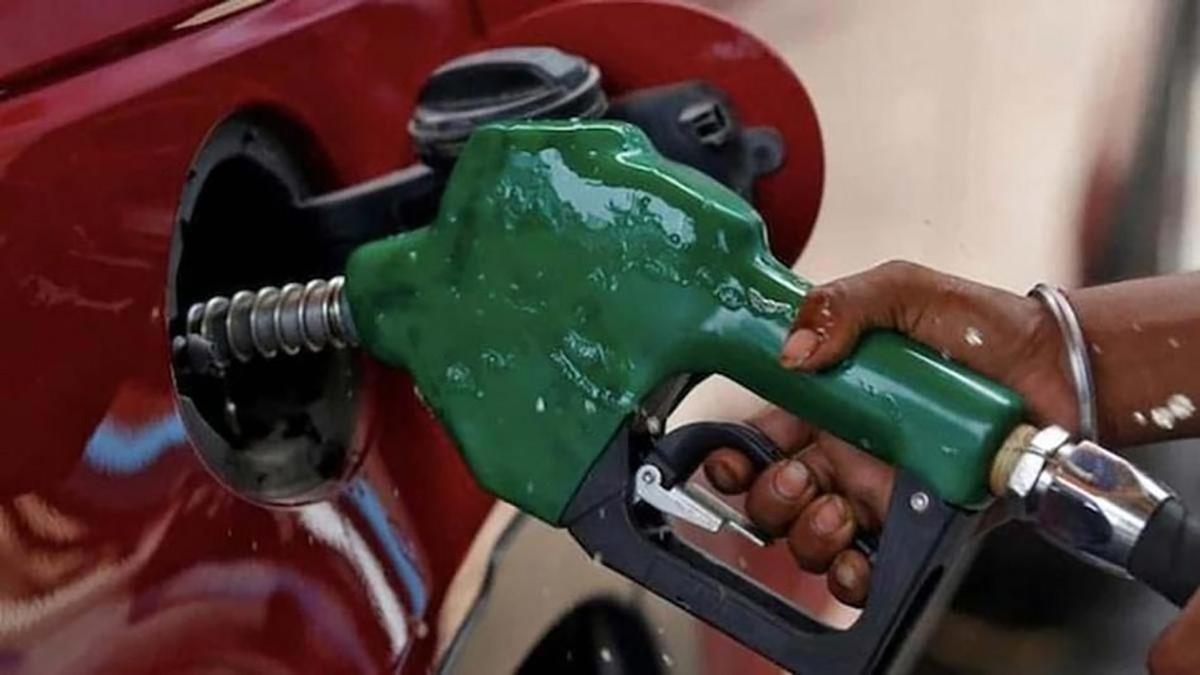 Oil should be priced reasonably, high prices to hurt world economic recovery: India to OPEC