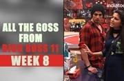 All the goss from Bigg Boss 11: Hina and gang's wrong move results in Sapna's eviction