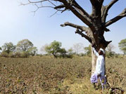 Who is to take the responsibility for Maharashtra's drought?