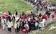 VHP slams NGT's Amarnath order, says Hindus not responsible for all environmental problems