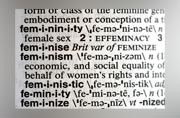 Merriam-Webster dictionary's word of the year is feminism. Photo: AP