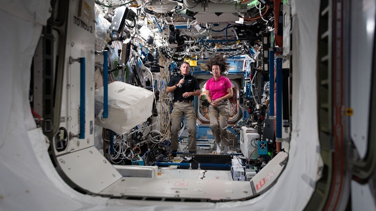 - Space Station 2 x675 - Mouse sperm stored on Space Station produces healthy offspring