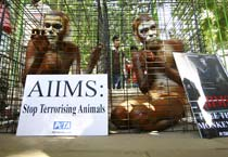 PETA protests treatment of monkeys