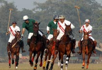 Polo: Royal Gems vs Plywood