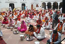 Hariyali Amavasya celebrated in Jaipur