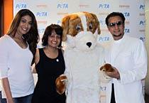 Raveena, Gulshan promote PETA