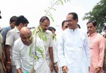 Madhya Pradesh CM planting a sapling