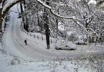 Snowfall hits life in Kashmir Valley
