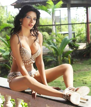 Sherlyn Chopra keeps fans happy, tweets her hot pictures