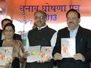 BJP releases its Delhi election manifesto