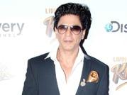 Shah Rukh Khan, KKR, IPL, Gauri Khan, Bollywood