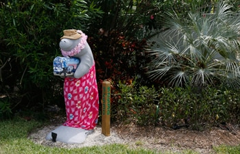 Florida quirky attractions