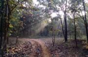 Two hidden gems of Chhattisgarh