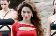 Tamannaah's upcoming film Thozha, which has Nagarjuna and Karthi in the lead roles, is all set to release on March 25. Meanwhile, few new pictures of the gorgeous actor from the film are doing rounds on social media. Tamannaah is sizzling hot in these sti