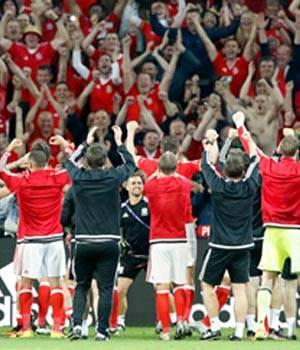 Euro 2016 photos,Wales,Belgium,Gareth Bale,Sam Vokes,Hal Robson-Kanu,Ashley Williams