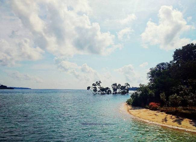 Havelock is the largest island that comprise Ritchie's Archipelago in the Andaman islands.