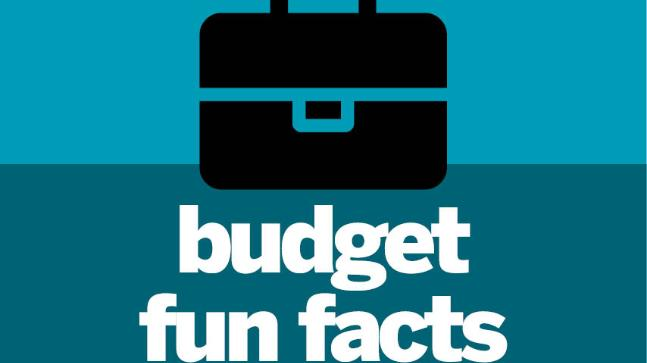 Budget fun facts