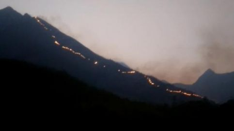 The forest fire in Tamil Nadu's Theni