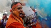 Colours, crackers and more: BJP workers celebrates across India