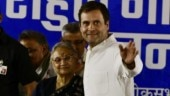 In pictures: Rahul Gandhi, Sheila Dikshit hold public meeting in Chandni Chowk constituency