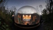Sleep in a bubble or inside a snake. 10 strangest Airbnb homes you should stay at