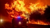 California faces more devastation from raging wildfire; India records highest single-day spike in Covid cases | See in pictures