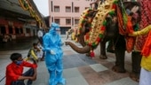India Today Insight's top photos for June 2021
