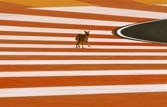 F1: Dusty track, dogs embarrass organisers