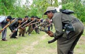 Govt sanctions Rs 120 crore to fortify police stations in Naxal-hit areas
