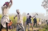 UP NREGA scam worth over Rs 10,000 crore, claims Sandeep Dixit