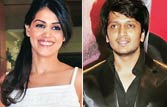 Genelia D'Souza and Riteish Deshmukh to tie the knot in 2012