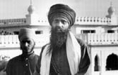 'Bhindranwale's rise from a small-time priest was meteoric'