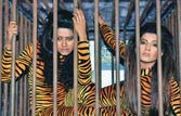Desi Kardashians pose in tiger suits for PETA