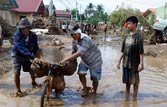 Typhoon Washi kills 497 in Phillipines, hundreds missing
