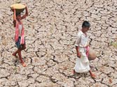 Scant monsoon rains could affect India's agricultural output