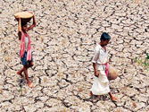 Shadow of drought: Agriculture secretary rings alarm bells as monsoon proves elusive