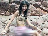 'Attacked' for sporting tricolour, did model Gehna Vashisht plan it for publicity?