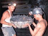 Coal firms fabricated figures for preferential allocation, finds CBI