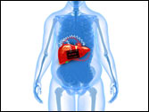 The New Battle of the Bulge: Liver diseases on a rise in India