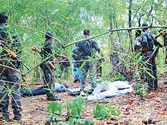 Andhra Pradesh police intensify combing operation in Nallamala forests to flush out Maoists