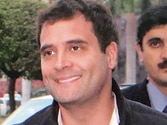 Rahul Gandhi brings betel leaf cultivation under Centre's RKVY scheme, keeps his promise to Uttar Pradesh farmers
