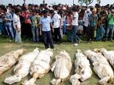 Bangladesh disaster toll climbs to 430, Savar mayor suspended