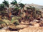 Met. gets its act right as cyclone strikes the coast